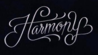 Tips to Live in Harmony to Stay Happy