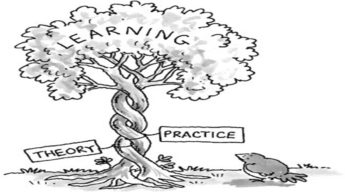 Importance of practical education over theoretical!!
