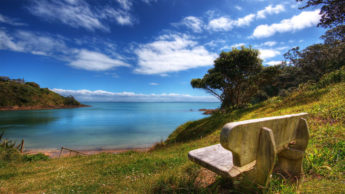 Why peaceful scenery makes our mind peaceful